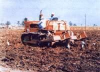إعداد الأرض لزراعة القصب  Large_1102844960
